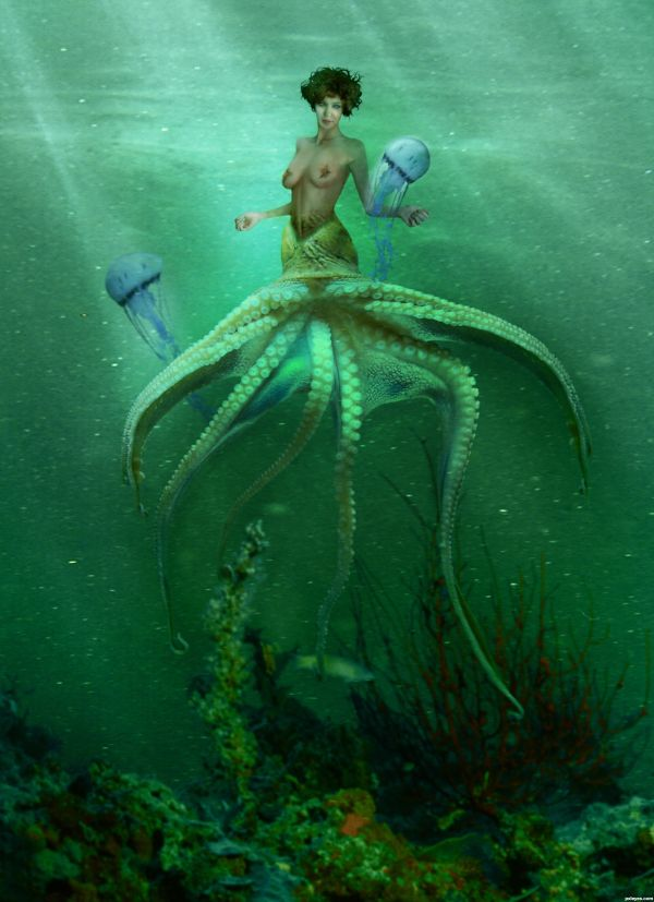 Sea Witch Creatures
