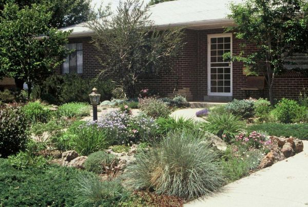 simple landscaping ideas front