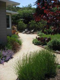 decomposed granite landscape ideas - Google Search | Mae ...