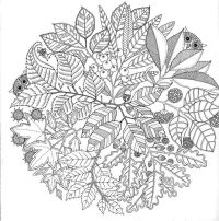 color book: ANTI STRESS COLORING BOOK   owls   Pinterest ...