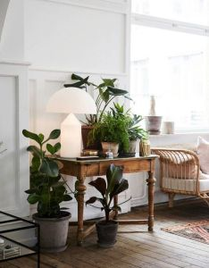Pin by andrea on it   all about interior pinterest small spaces vintage furniture and plants also rh