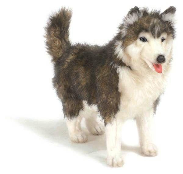 Hansa 4824 Dog Husky Siberian Standing A STUFFED