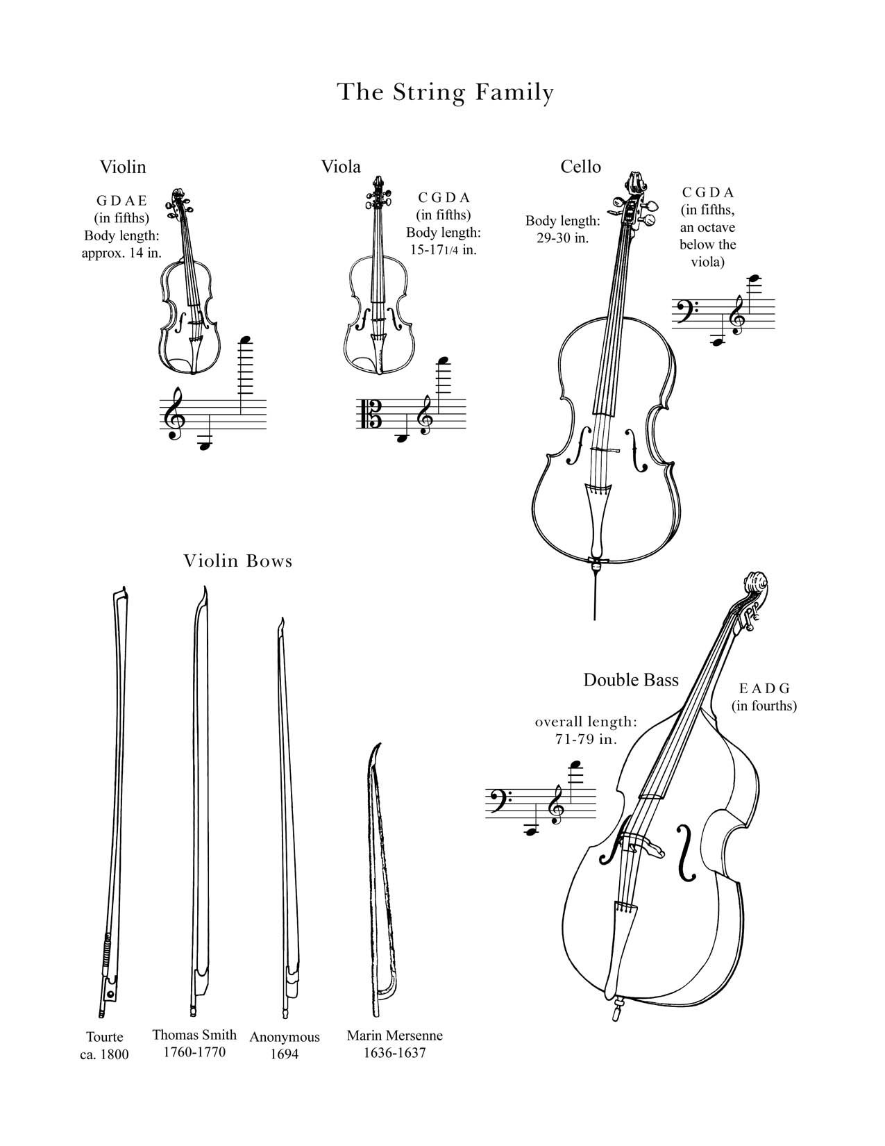 The String Family Drawings Of Instruments In The String Family From The Lancaster Symphony