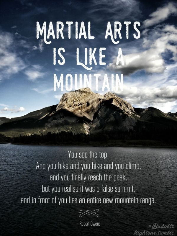 Martial Arts Inspirational Quote