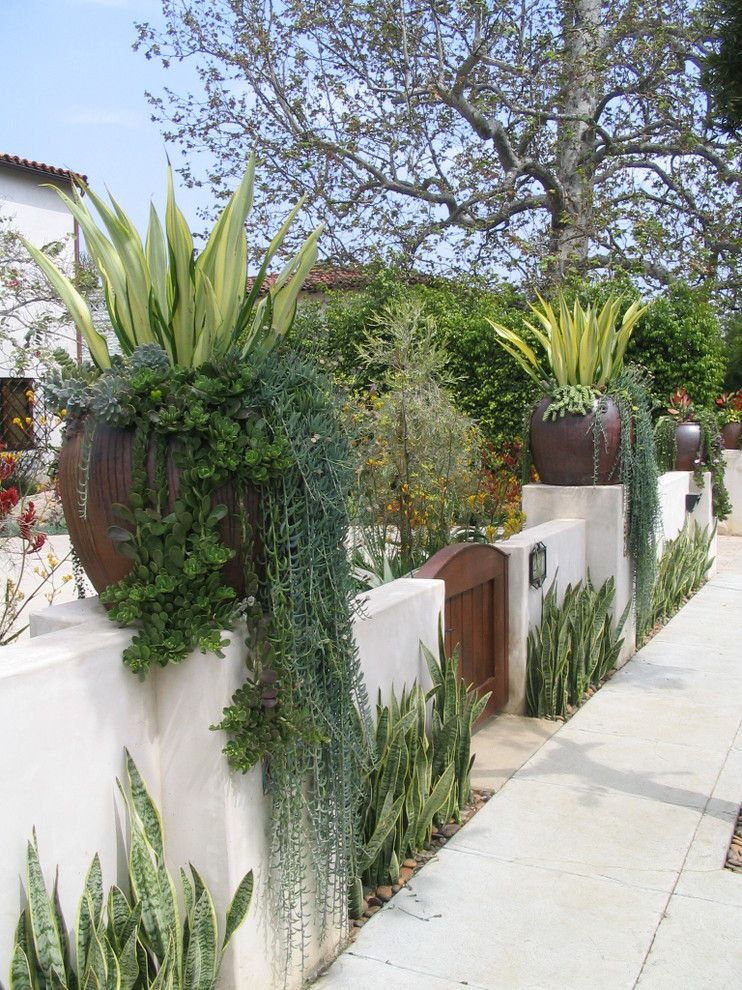 21 Amazing Mediterranean Outdoor Design Amazing Ice Plant Decorating Ideas For Stunning Landscape