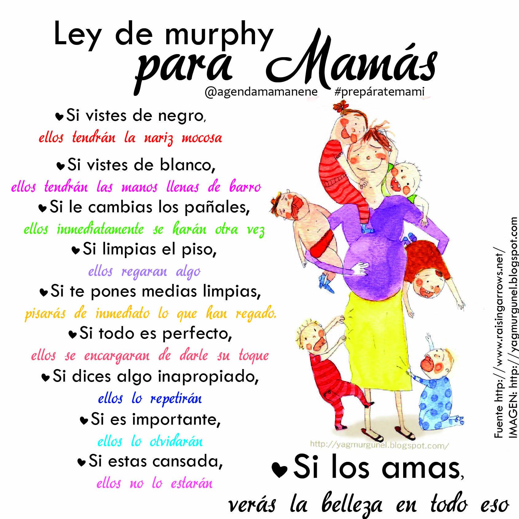 Ley De Murphy Para Mamas
