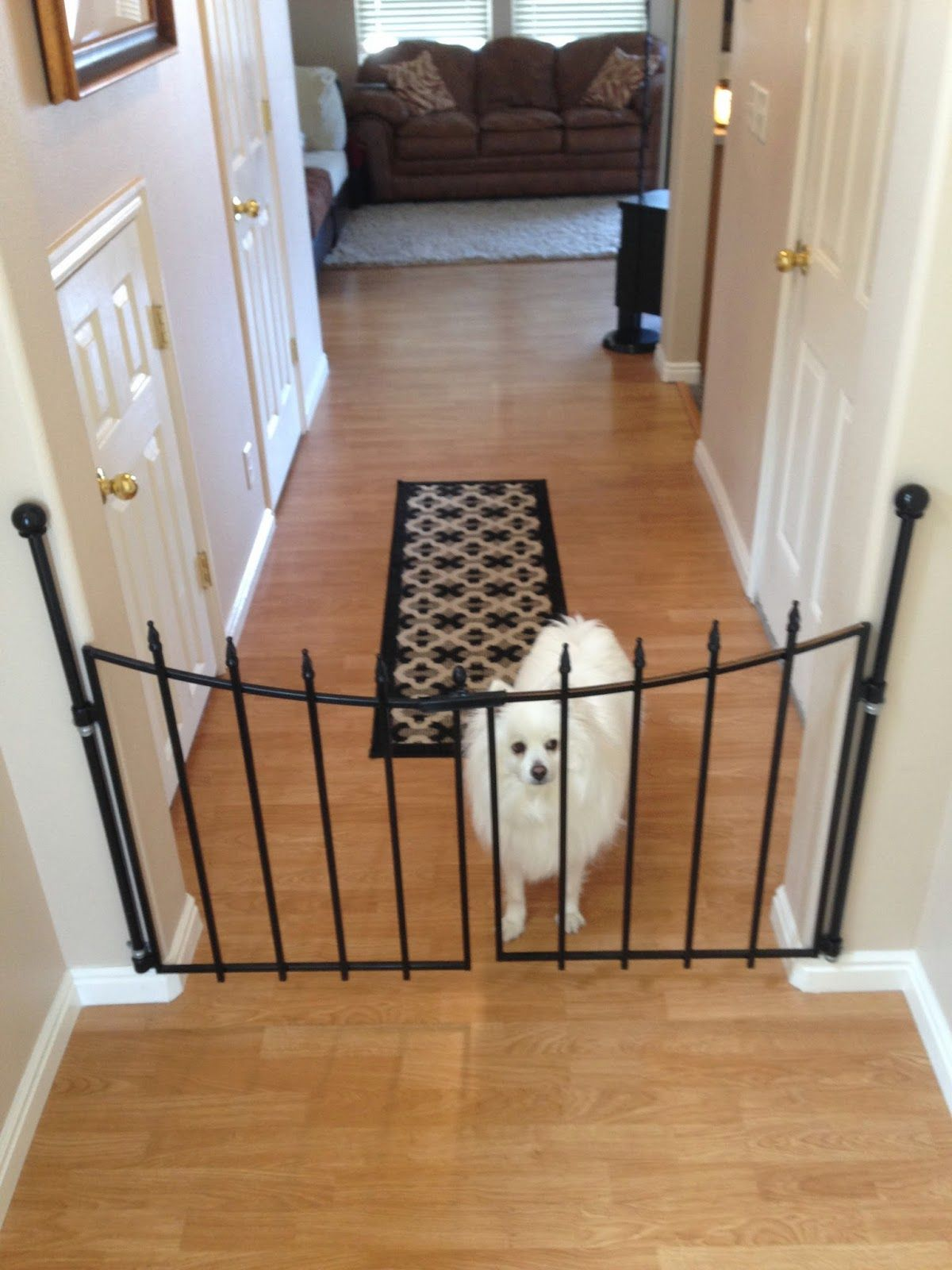 Dog House Iron Gates