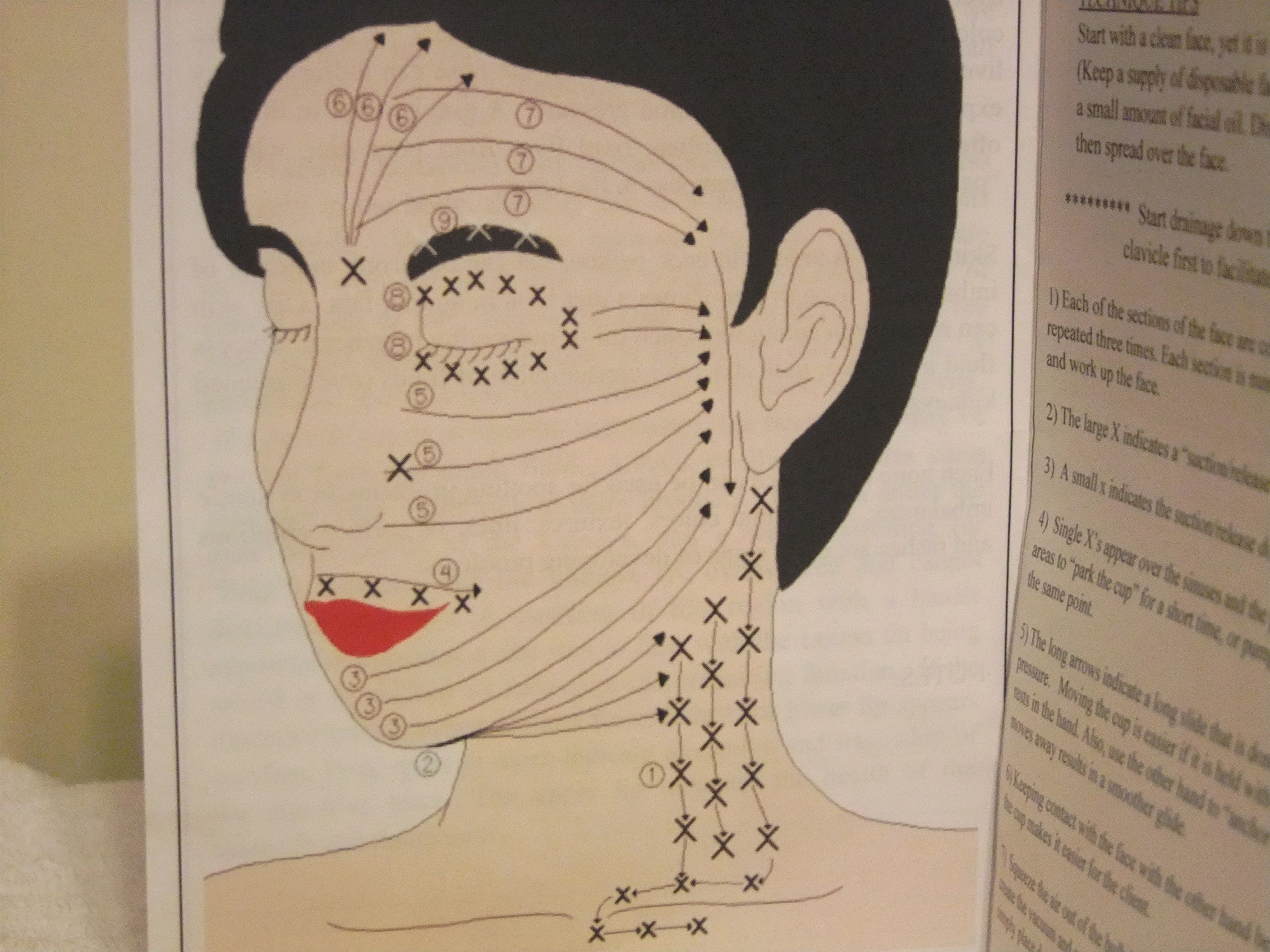 facial lymph nodes diagram four way dimmer switch wiring face drainage pattern x for suction and release