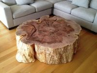 Tree Stump Coffee Table natural Unique Design tree stump ...
