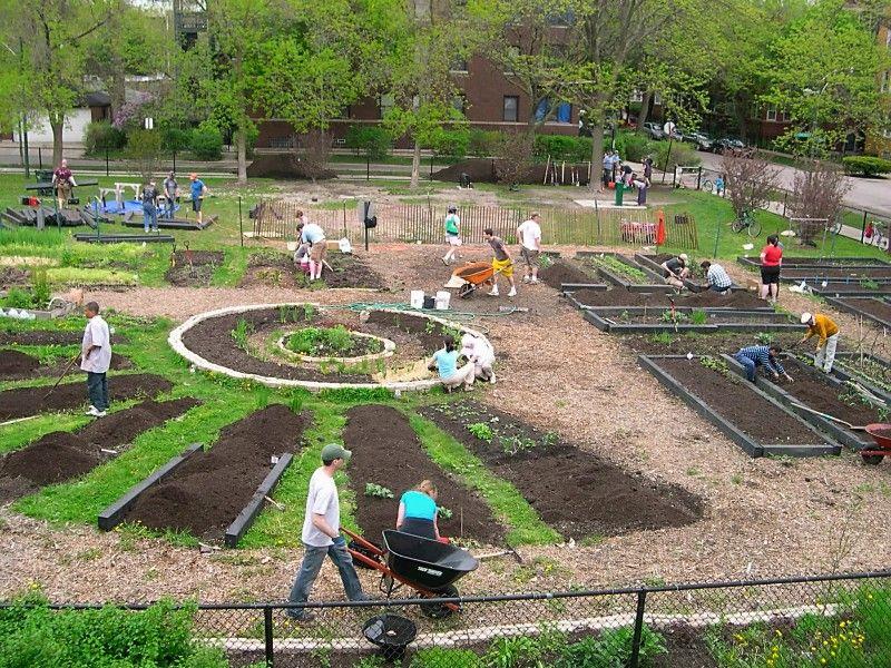 Community Garden Design Google Search Community Garden Ideas