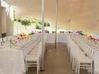 White Tiffany Chairs & Gold Tiffany Chairs | Brackenfell ...