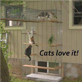 Cheap Enclosure Outdoor Cat Furniture  Room With A View Petit Outdoor Cat Enclosure Cheap