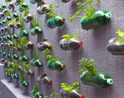 Pinterest Vegetable Garden Ideas Google Search Posters
