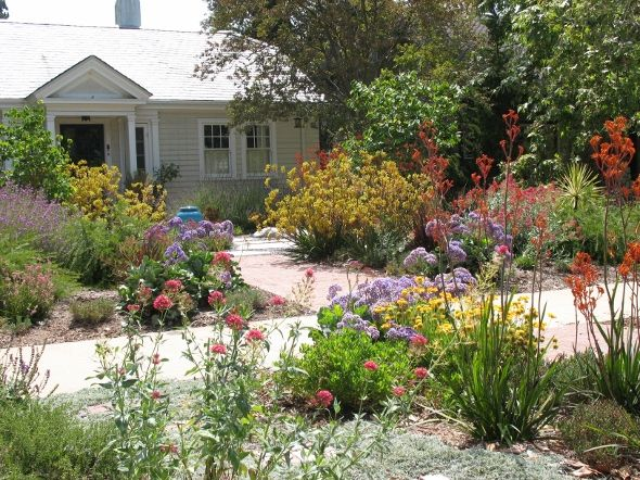 Drought Tolerant Front Garden Pasadena Landscape Pinterest