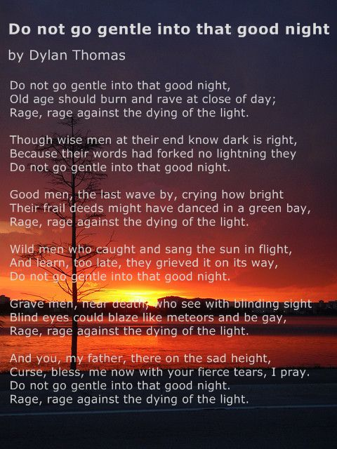 Rage Rage Against Dying Light Poem