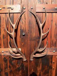 Antler hardware | Rustic | Pinterest | Antlers, Doors and Iron