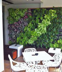 Green Wall Garden, Green Roof Garden & Vertical Garden ...