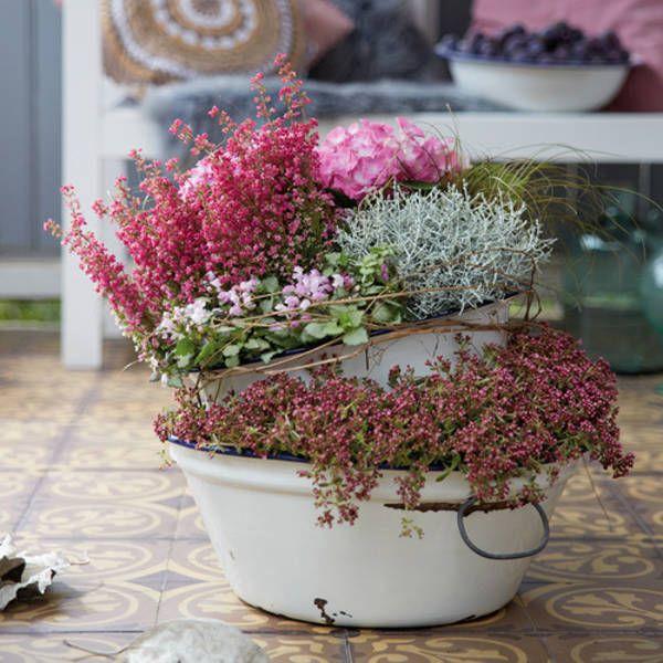 Romantischer Herbst Dekorative Pflanzideen Für Balkon Und