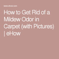 How to Get Rid of a Mildew Odor in Carpet | Remove mold ...