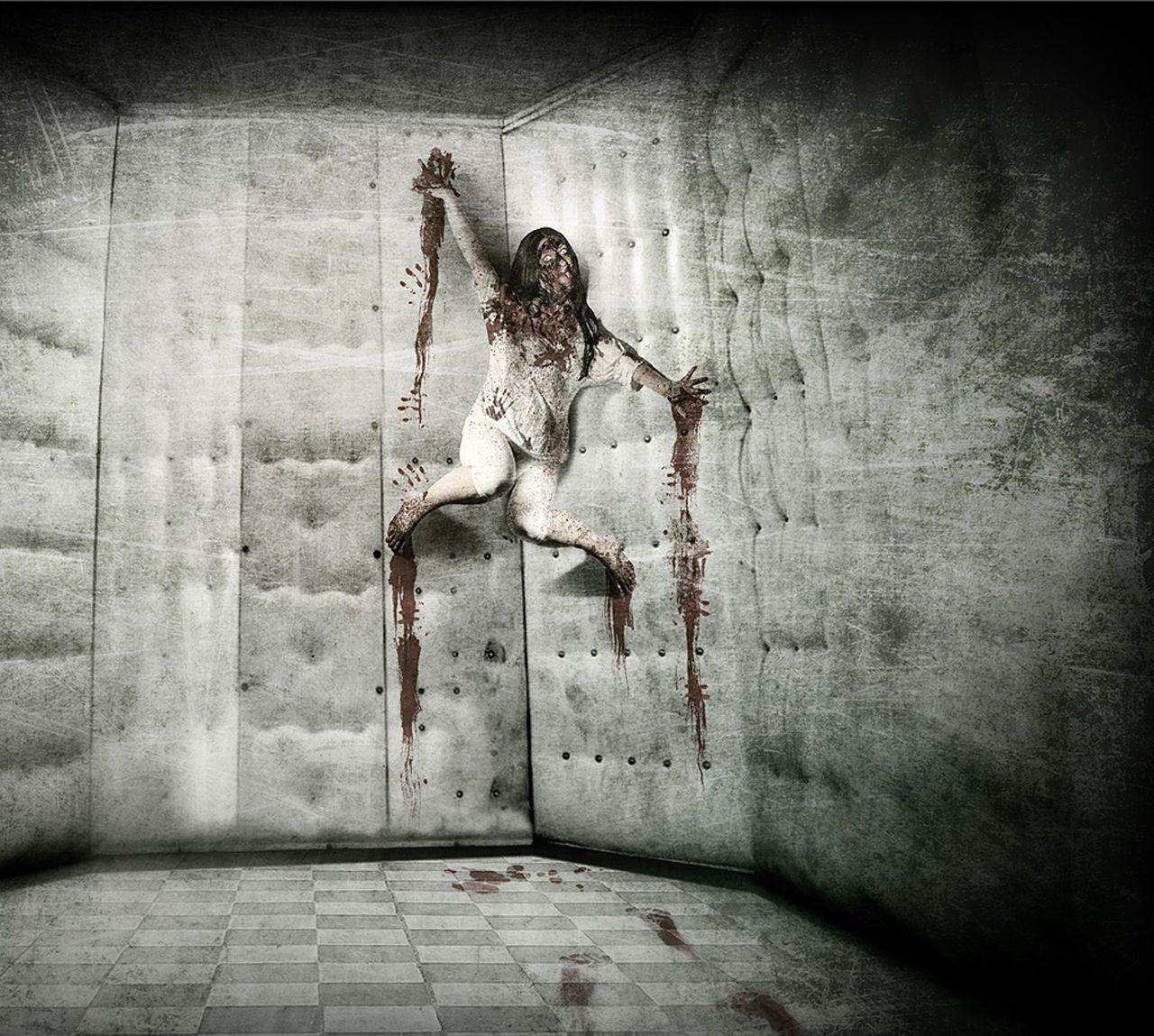 Creepy Asylum Pinterest Asylum Haunted Houses And Hay Ride