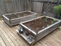 Raised garden beds made from old fence wood. | I got this ...