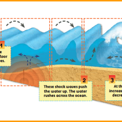 Tsunami Diagram With Labels Hps Sentinel G Wiring Pictures Of Kidskunst Info 28 Images