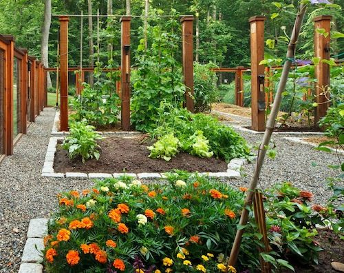 Guest Blogger How To Design A Beautiful Vegetable Garden