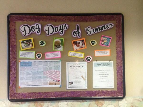 Nursing Home Activity Bulletin Board Ideas