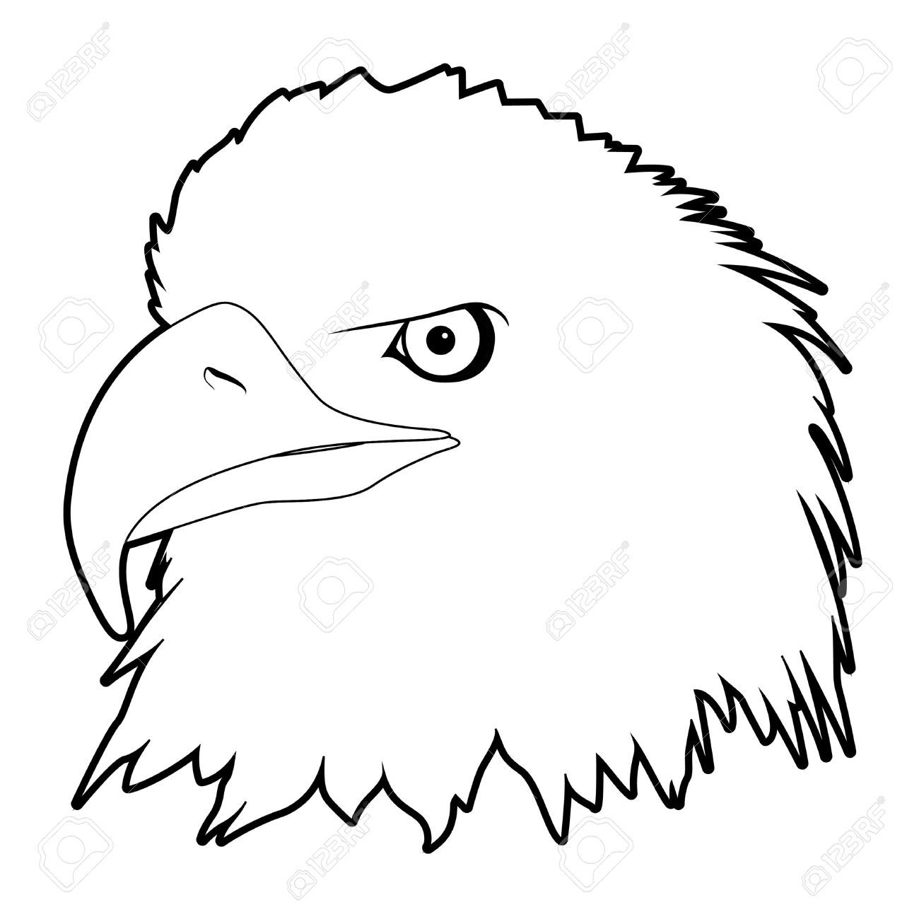 Outline Drawn Eagle Head On White Background Royalty Free
