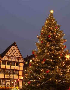 New post stunning christmas trees decorated outside also decors ideas rh uk pinterest