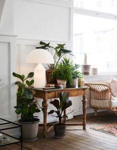 Future interior detailinginside plantsglobal also pin by catherine cortade on idees pour la maison pinterest rh