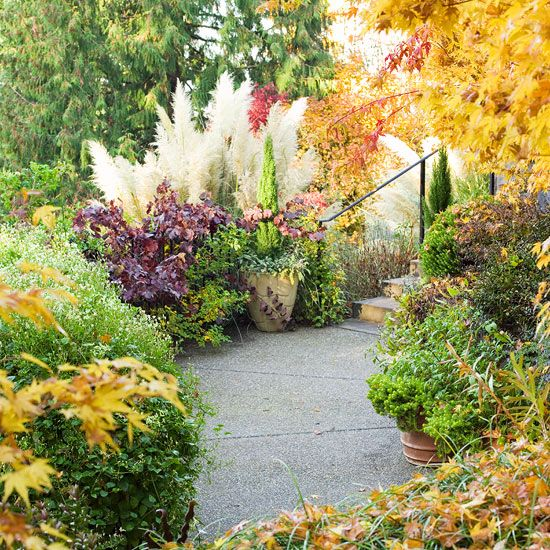 fall landscaping ideas contrast