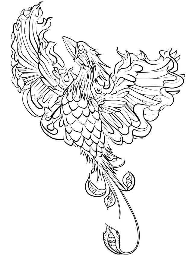 Coloring Pages For Adults Difficult Flower Cannas