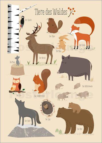 Best 25 Tiere des waldes ideas on Pinterest