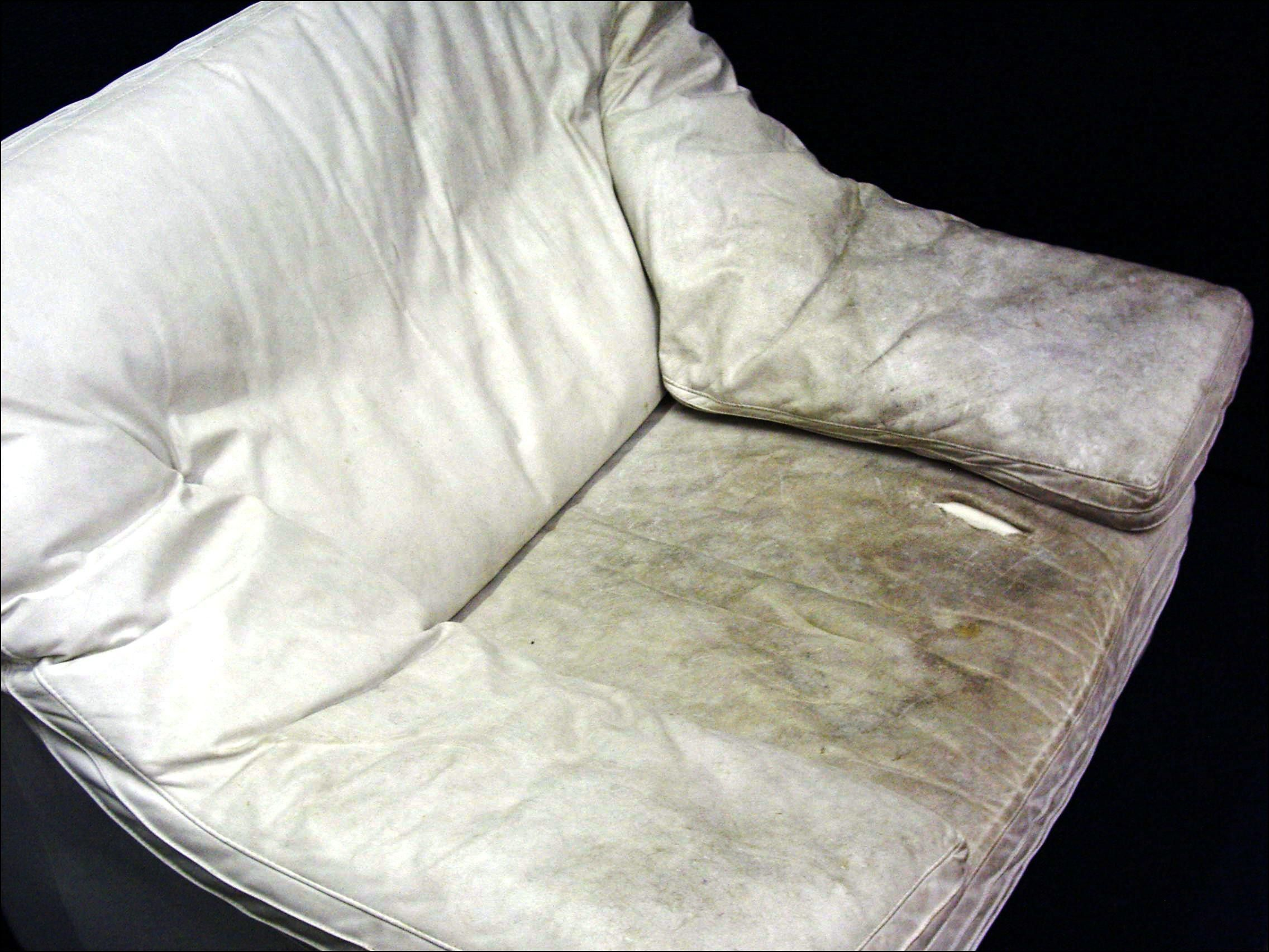 leather conditioner sofa best futon or bed cream cleaner multifunctional