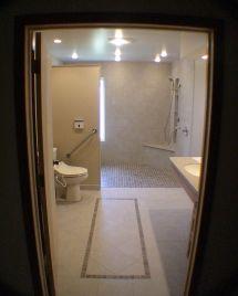 Shower Handicap-Accessible Bathrooms
