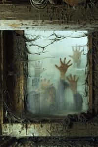Scary Halloween Decoration Ideas Haunted House Ideas For Adults
