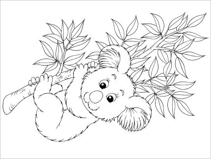 Koala Colouring In. Five colouring in pages for Australia