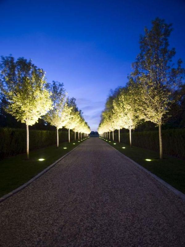 Best 25 Outdoor path lighting ideas on Pinterest Garden