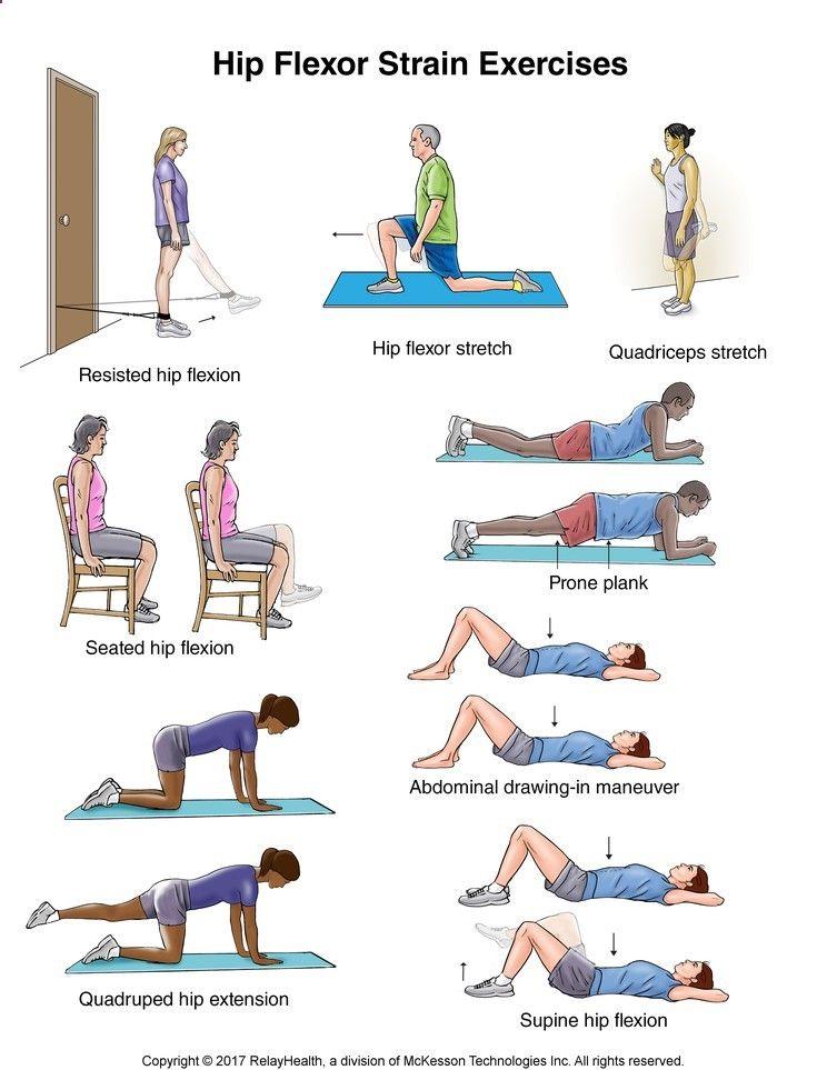 Illustration Of Hip Flexor Muscles
