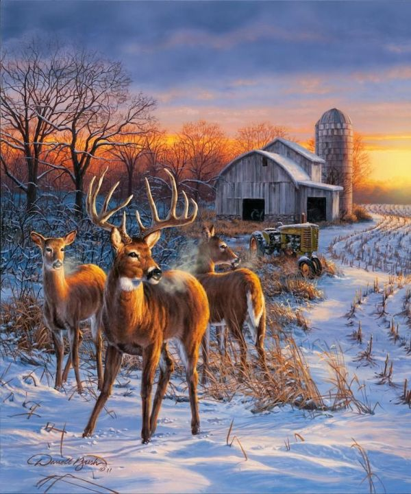 """""""winter Whitetails"""" - Landscape-nature Paintings Winter Wildlife And Animal"""