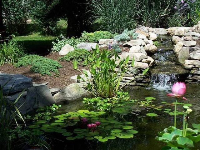 63 Relaxing Garden And Backyard Waterfalls DigsDigs Gardening
