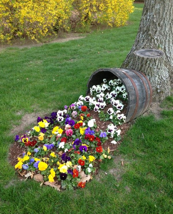 Beer Keg Colorful Pansy Of Garden Design Ideas Garden Design