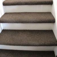 carpet treads, painted riser | Basement | Pinterest ...