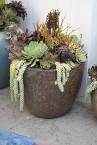 Large succulent arrangement by Simply Succulent https ...