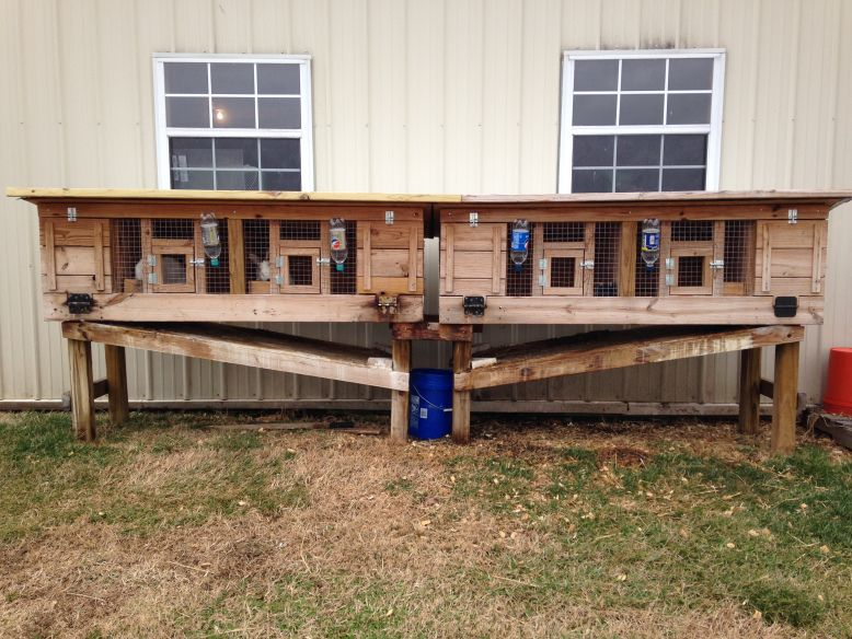RABBIT HUTCH WITH AUTOMATIC POOP COLLECTOR Hutch Ideas Big