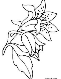 Designs Of Flowers For Kids Valoblogi Com
