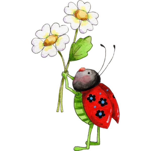 lady bug polyvore