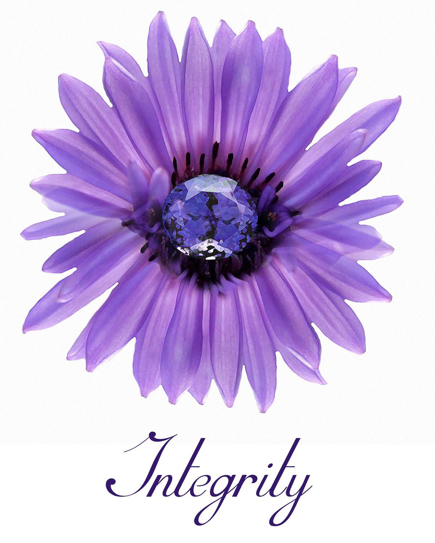 Integrity Yw Yw Values Lds Yw Values