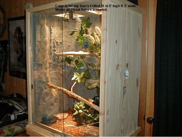 Chameleon Habitats Sale